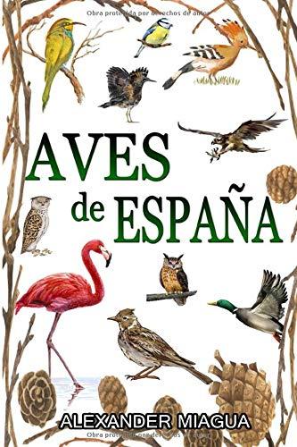 Aves de España: GUIA DE CAMPO AVES DE ESPAÑA Y EUROPA (GUIAS DEL NATURALISTA-AVES)/ Libro De Aves Españolas y Europeas Con Fotos a Color
