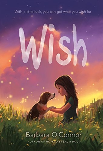 Product Image of the Wish