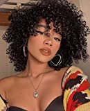 BLISSHAIR parrucca capelli umani ricci Parrucca Donna Capelli Veri Afro kinky curly human hair wigs 130% density no lace front wig parrucche capelli veri corti
