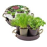 Herb Garden met 7 potjes + 7 kruiden | incl. grond | kruiden kweekset | cadeau | DIY | grow your own | kruidentuin