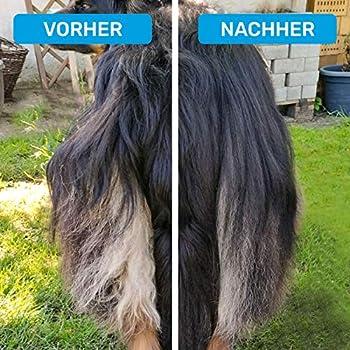 Bluepet® GlanzTanz Peigne démêlant pour chien à poils longs - Brosse pour chien et chat - Élimine les nœuds, sous-poils et nœuds - Massage