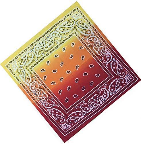 Unbekannt Bandana Kopftuch Halstuch Nickituch Biker Tuch Motorad Tuch verschied. Farben Paisley Muster, Rot/Gelb Double, ...