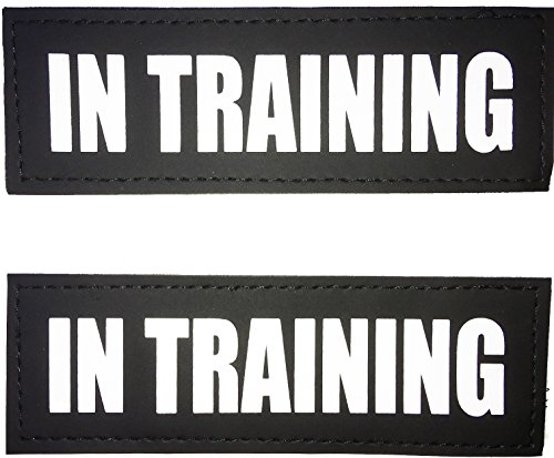 Albcorp Reflective In Training Patches with Hook Backing for Service Animal Vests /Harnesses Medium (5 X 1.5) Inch