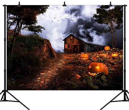 Aliyz PGT224C - Linterna de Vinilo para fotografía (300 x 240 cm),...
