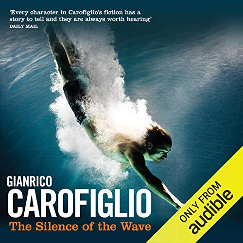 The Silence of the Wave cover art