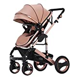 FAFY Baby Passeggero Travel System 2 in 1 Buggy Carrozzina Passeggino Bambino Reverse Buggy Baby Jogger,Brown