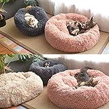Immagine 1 festnight cuccia per cani gatti