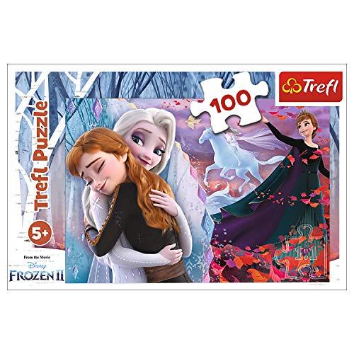 16399   Puzzle 100 de Anna y Elsa