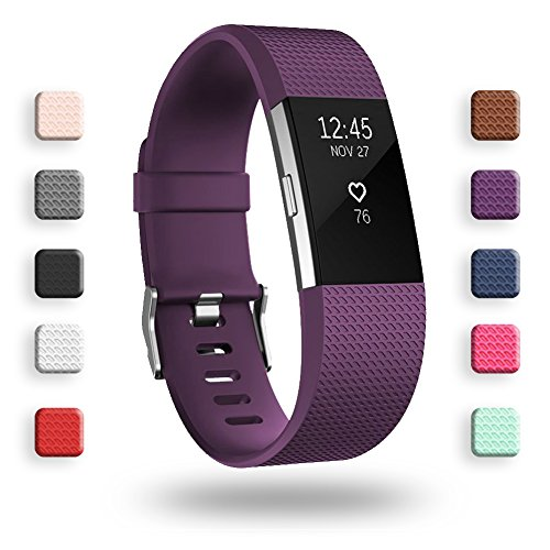POY Replacement Bands Compatible for Fitbit Charge 2, Classic Edition Adjustable Sport Wristbands, Large Plum Delaware
