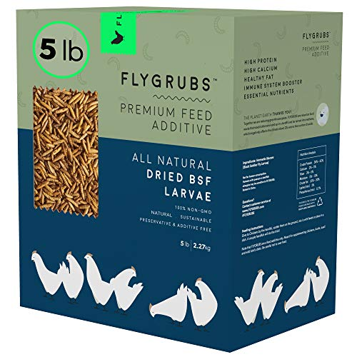 FLYGRUBS Superior to Dried Mealworms for Chickens (5 lbs) - Non-GMO - 85X More...