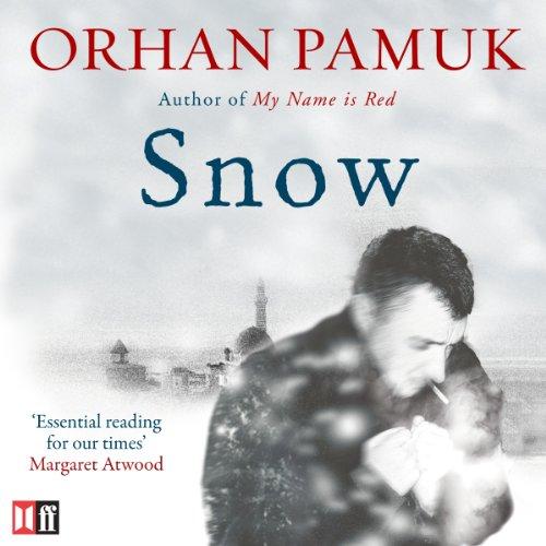 Snow cover art