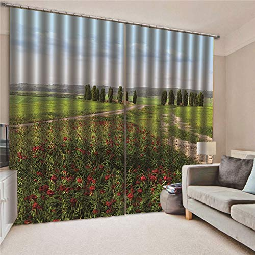 cortinas salon translucidas marron