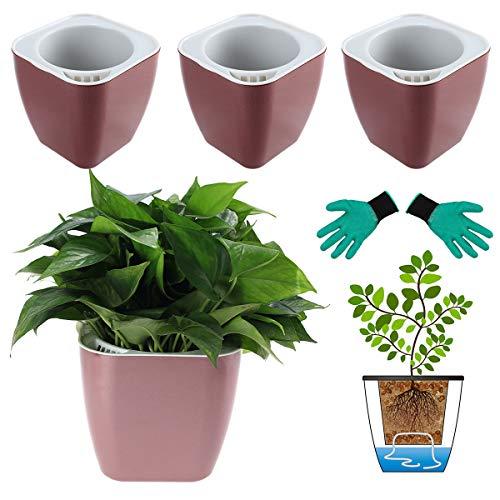 DeEFL 3 Packungen 17,8 cm große selbstbewässernde Pflanzgefäße aus Kunststoff, selbstbewässernde Töpfe für Zimmerpflanzen, afrikanische Veilchen, Ozeanspinnen, Orchidee, Rotgold