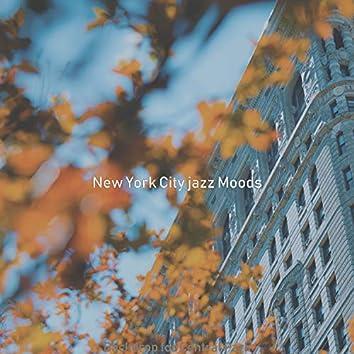 Backdrop for Central Park