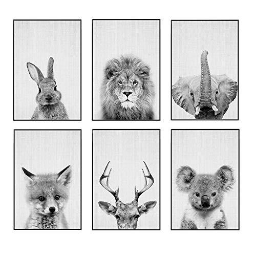 JUNIQE® Gerahmtes Poster-Set - Tierportraits - Poster & Prints für stilvolle Wände - 6X 20x30