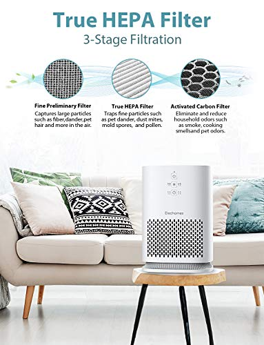 Elechomes Air Purifier for Home with True HEPA Filter, Air Cleaner Purifiers for Allergies and Pets Smokers Pollen Dust, Odor Eliminators for Home Bedroom with Aromatherapy, 215 sq. ft, EPI081
