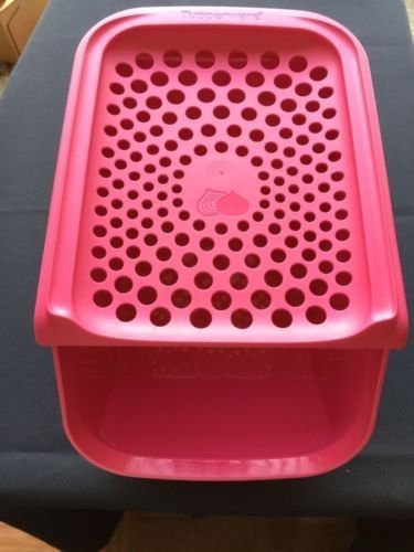 Tupperware Onion Garlic Smart Keeper Access Mates Container Pink New
