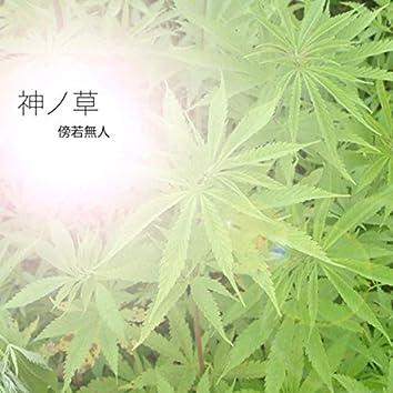 神ノ草(Leaf of God)