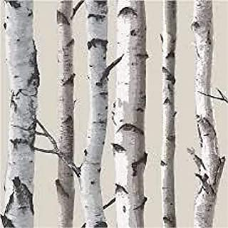 Fine Decor Natural Beige / Cream - Fd31051 - Birch Tree - Forest Woods - Wallpaper