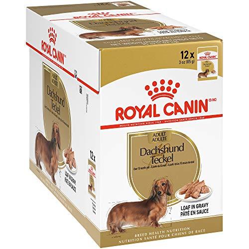 Royal CANIN Breed Health Nutrition - Alimento húmedo para Perro Salchicha, Pan en Gravy, 0, 3 oz Pouch (Pack of 12)