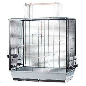 Grande cage à oiseaux perruches canaris Grande Perruche avec sans Siège et accessoires