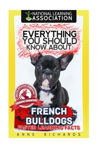 Everything You Should Know About: French Bulldogs