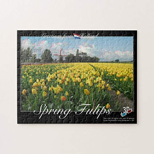 Scott397House Jigsaw Puzzles 300 Piece for Adults Kids Ages 8-10 Pieces PuzzleHolland Spring Tulips Landscape 3D Anaglyph Fun Game Toys Birthday Gifts Fit Together Perfectly