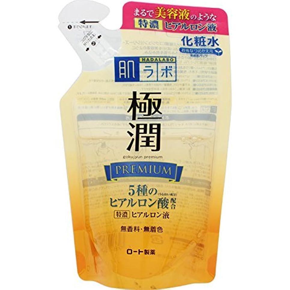 くすぐったい顎離す肌研 極潤プレミアム ヒアルロン液 つめかえ用 170mL