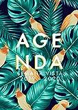 Agenda 2019-2020 Semana Vista: Agenda 18 meses 2019-2020 semana vista español | julio 2019 - diciembre 2020 | horario | hojas de palma y aves tropicales