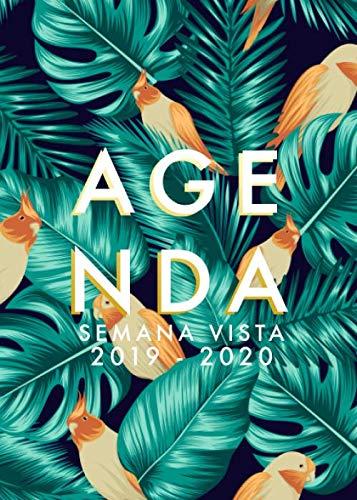 Agenda 2019-2020 Semana Vista: Agenda 18 meses 2019-2020...