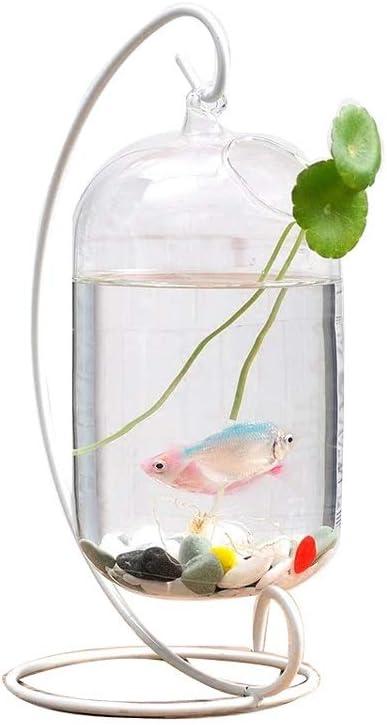 TWDYC Mini Albuquerque Mall Desktop Transparent Glass Ranking TOP2 Off Creative Home Tank Fish