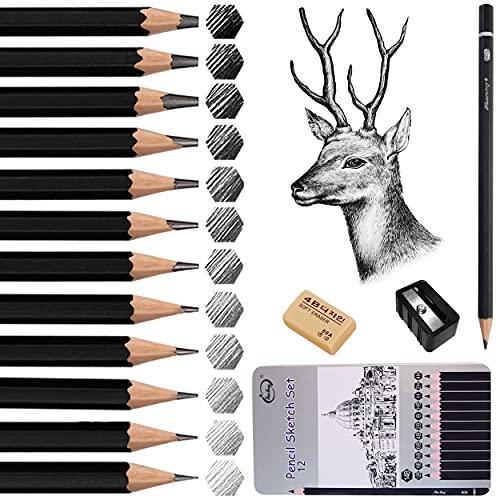 Bleistift Set, Surcotto 14er Zeichenstifte Set, 12 Skizzienstifte+1 Spitzer +1 Radiergummi,14B 12B 10B 8B 6B 4B 2B B HB H 2H 4H Künstlerstift für Kinder Erwachsene Anfänger Professionelle Zeichnen
