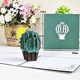 GiIiv 3D Pop Flores for la Tarjeta de cumpleaños Aniversario día de la Madre se recupere Pronto Tarjetas de felicitación (Color : Cactus)