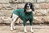 HOTTERdog by Equafleece® Fleece Dog Jumpers - Sizes XS - XL Colours Grape & Green - Keep Your Dog Warm, Dry, and Comfortable (L, Green)