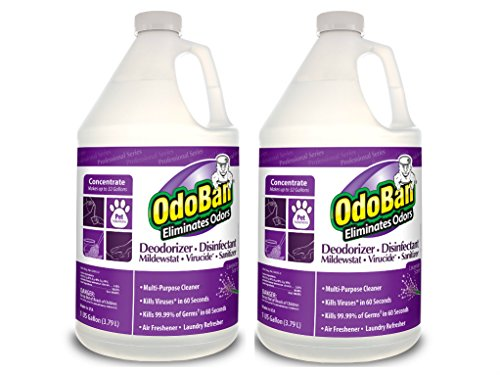 OdoBan Odor Eliminator and Disinfectant Concentrate, Lavender (2)