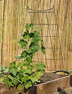 Gardener's Supply Company Wire A-Frame Trellis