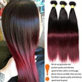 Dai Weier Bresilienne Hair En Couleur Straight Weave Bundles Lot 3 Two Tone 1B 99J Red 100% Human Hair Bundles 12 14 16 poucese