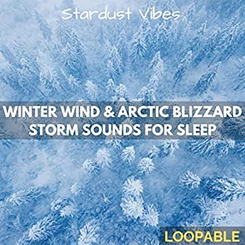 Winter Wind & Arctic Blizzard Storm Sounds for Sleep (Loopable)