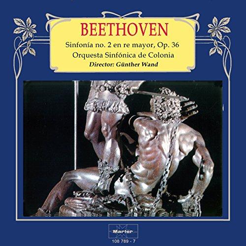 Sinfonía No. 2 in D Major, Op. 36: I. Adagio molto - Allegr
