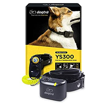 Dogtra YS300 Anti Bark Dog Collar for Small and Medium Dogs Adjustable 6 Stimulation Levels Vibration Warning Low to Medium Output Waterproof Rechargeable w/ PetsTEK Clicker