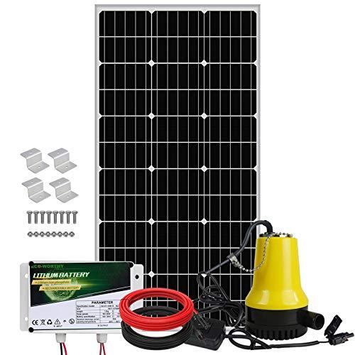 DC HOUSE Solarwasserpumpensystem-Kit 100 W Solarpanel + 12 V Tauchwasserpumpe + 20 A-Regler für die Bewässerung + 1 Paar 16,4 Fuß Solarkabel + 1 Satz Z-Montagehalterungen