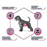Zoom IMG-2 advance veterinary diets urinary cibo
