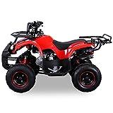 Kinder Quad S-8 Farmer 125 cc Motor Miniquad 125 ccm Toronto (Rot) - 2
