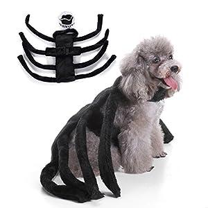 Pet Coat Dexinghaoye pour animal domestique Chien Chiot mignon araignée Costume de harnais Chat Halloween Taille Fancy Party