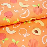 Emily&Joe's fabrics 100% Baumwolle Stoff Meterware Früchte
