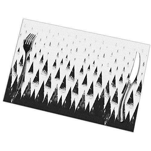 N/A Juego de 6 manteles Individuales Black Hills Placemats Antideslizantes Lavables Resistentes al Calor para Mesa de Comedor