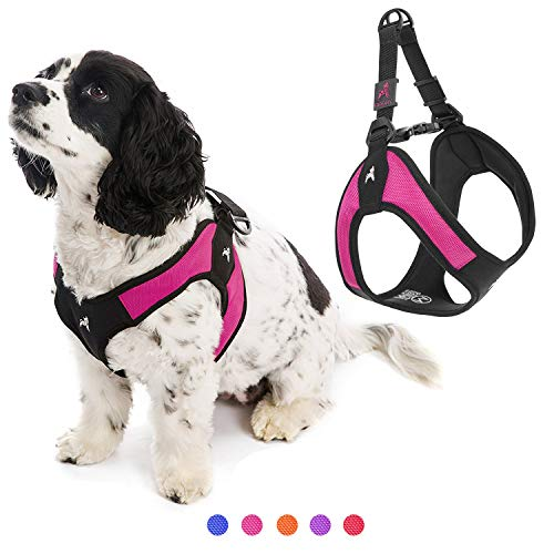 Gooby Dog Harness - Hot Pink, Medium - Escape Free Easy Fit Patented Step-in Small Dog Harness - Perfect on The Go - No Pull Harness for Small Dogs or Cat Harness for Indoor and Outdoor Use