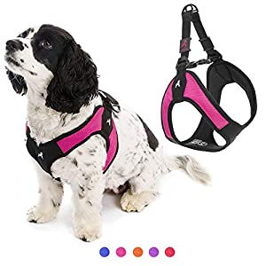 Gooby Dog Harness – Hot Pink, Small – Escape Free Easy Fit Patented Step-in Small Dog Harness – Perfect on The Go – No Pull Harness for Small Dogs or Cat Harness for Indoor and Outdoor Use