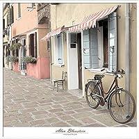 ポスター アラン ブラウステイン Venetian Bicycle 額装品 アルミ製ハイグレードフレーム(ホワイト)
