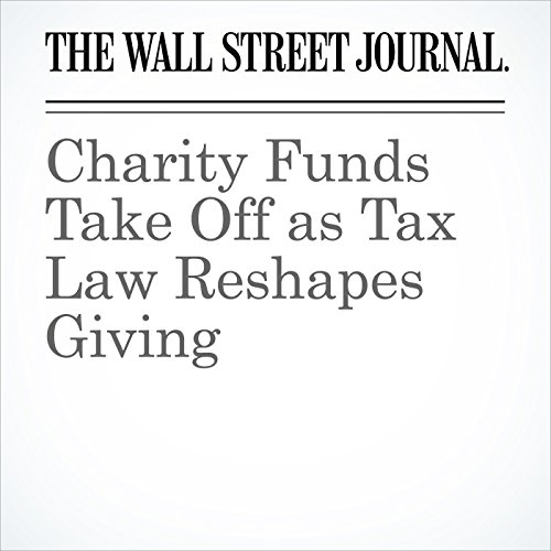Charity Funds Take Off as Tax Law Reshapes Giving copertina